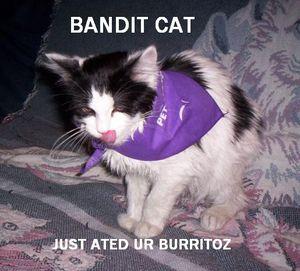 Burritobandit