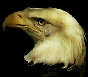 Americacries1agc