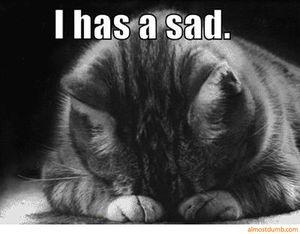 I-has-a-sad