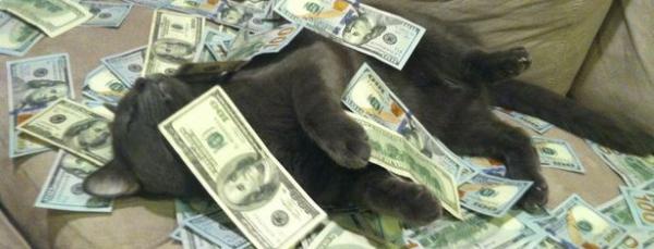 Cash-Cats