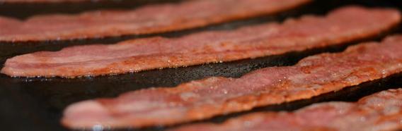 JennieO-turkey-bacon