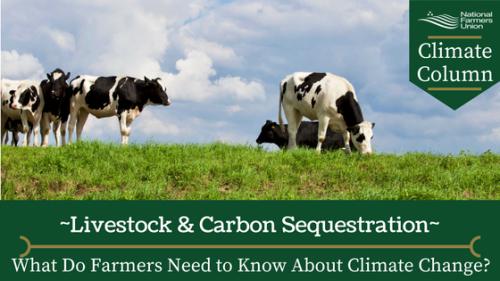 Carbon-sequestration