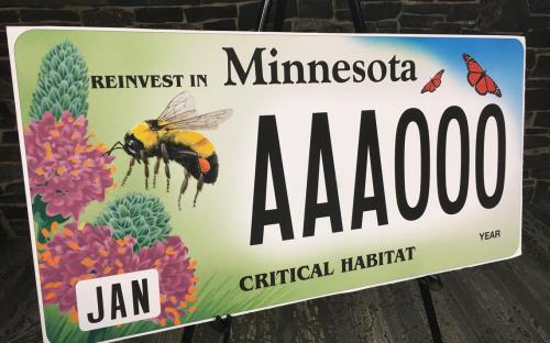 Pollinatorplatefinal