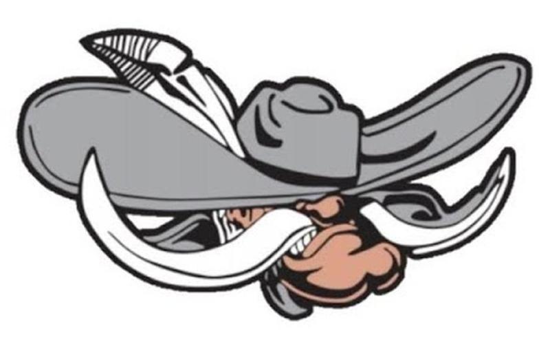 Dilworth-Glyndon-Felton School District Rebel mascot