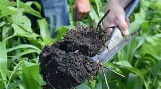 Soilhealth